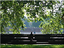 TQ2977 : Solitude by Ian Paterson
