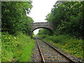 N9969 : Railway bridge at Knockcommon by Kieran Campbell