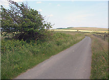 SS8586 : Ridgeway walk towards Mynydd Baedan by eswales