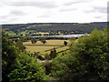 SD3097 : Coniston Water from Cat Bank by Dr Neil Clifton