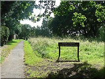 SZ0895 : Redhill: entering the common from the north by Chris Downer