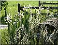 ST8352 : 2008 : Iris at Overcourt Farm by Maurice Pullin