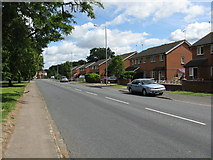 SO8453 : Modern Housing on Bromwich Road by Peter Whatley