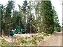 NH6271 : Dalreoch Wood: timber harvesting by Rob Woodall