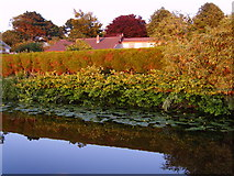 SD4760 : Lancaster Canal by Michael Graham