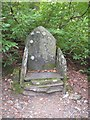 SD3195 : John Ruskin's Slate 'throne' by Sue Rahman