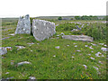 M2302 : Northernmost of the Gleninsheen wedge tombs by C Michael Hogan
