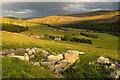 NJ3001 : Torran in Glen Gairn at sunset by Nigel Corby