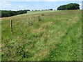 SU8213 : Farmland near Chilgrove by Chris Wimbush