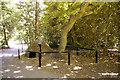 TQ2995 : Ice Well, Oakwood Park, London N14 by Christine Matthews