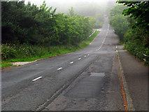J4681 : Bridge Road near Crawfordsburn by Rossographer