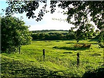 SU1872 : Farmland west of Ogbourne St Andrew, Wiltshire by Brian Robert Marshall