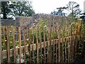 J0458 : Master McGrath Stone Maze, Tannaghmore Gardens by P Flannagan