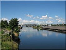SJ5183 : Manchester Ship Canal by Sue Adair