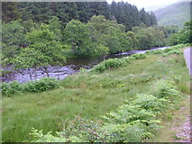 NM7372 : River Moidart by Dave Fergusson