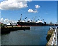 J3576 : Alexandra Graving Dock, Belfast by Rossographer