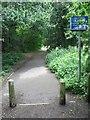 SZ0794 : Talbot Village: start of tarmac in Slades Lane by Chris Downer
