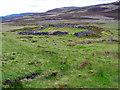 NO3187 : Ruins near Inchnabobart by Alan Findlay