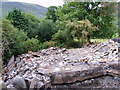 NY2220 : Ruin of Rigg Beck by Michael Graham