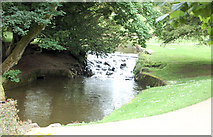 SK0573 : Waterfall in Pavilion Gardens. by John Firth