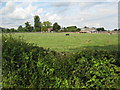 SO7629 : Sacksfield Farm near Staunton by Philip Halling