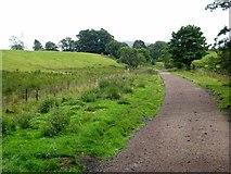NY6753 : South Tyne Trail at Knarsford by Oliver Dixon