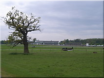 ST5295 : Looking across Chepstow Racecourse by Nick Mutton