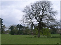 ST5295 : Piercefield Park - looking towards Piercefield House by Nick Mutton