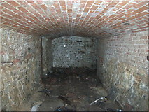 ST5295 : Piercefield House- cellars by Nick Mutton