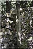 NY2000 : Waymarker in woods near Whahouse Bridge by Tom Richardson