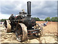 SO6533 : Speed the plough by Chris Allen