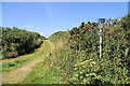 SW4740 : Track below Trevega Wartha by Pierre Terre
