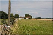 SU6514 : Rushmere Stud Farm, near Hambledon by Peter Facey