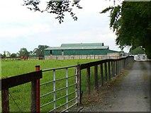N8732 : Rheindross Stud farm by James Allan