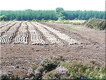 N6528 : Peat drying by James Allan