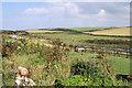 SW6042 : Carlean Farm by Pierre Terre
