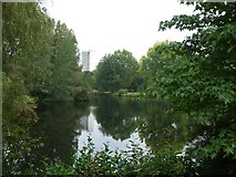 TQ2879 : Buckingham Palace lake by Kenneth  Allen