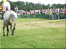 G9072 : Ballintra Races at Murvagh by louise price