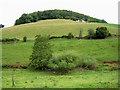 SO5407 : Hillside ruin by Pauline E