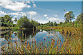 SD4583 : Pond on Bellart How Moss by Gary Rogers