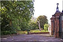 TQ2992 : Wooded area, Arnos Park, London N14 by Christine Matthews