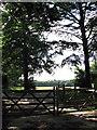 TG3210 : Padlocked gate by Evelyn Simak
