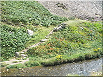 SS6549 : Riverside path down to the Heddon by Basher Eyre