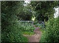 ST5087 : Gate on the track from Black Rock to Sudbrook by Steve  Fareham