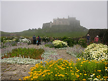 NU1341 : Lindisfarne Castle and Garden by Chris Gunns