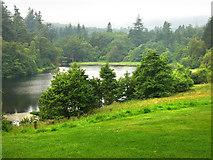 NU0702 : Tumbleton Lake, Cragside Estate by Chris Gunns
