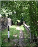 SE1316 : Springwood Footpath - Gledholt Bank, Paddock by Betty Longbottom