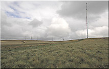 SD6614 : Masts on Rivington Moor by Gary Rogers