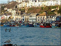 SX2553 : East Looe from West Looe quay by roger geach