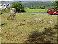 NN7821 : Dalginross Stone Circle by Ewen Rennie